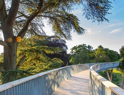 Westonbirt Arboretum, STIHL Treetop Walkway